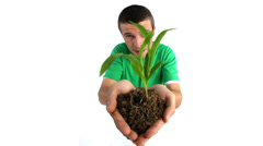 Man holding out plant Stock Footage
