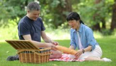 Mature Asian couple having a picnic together Stock Footage