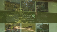 Stock Video Footage of Nature Conservancy Trail (9 of 9)