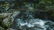 Stock Video Footage of Relaxing stream rushing over rocks (2 of 6)