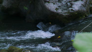 Stock Video Footage of Relaxing stream rushing over rocks (4 of 6)