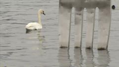 SWITZERLAND Vevey fork in the lake Alimentarium 4 Stock Footage