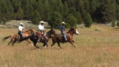 Three cowboys on horses, slow motion - stock footage