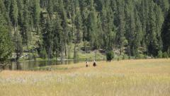 Two cowboys ride horses across meadow - stock footage