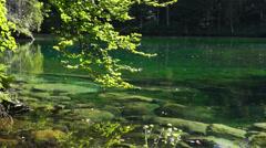 Badersee lake near garmisch-partenkirchen Stock Footage