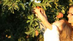 Mother and young daughter pick an apple - stock footage