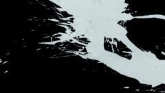 White paint splattering on black background, slow motion - stock footage