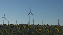 Turbine ecology windmill sunflower sun flower field system resource alternative  - stock footage