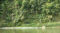 A tranquil lake amidst a forest. Stock Footage