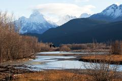 Chilkat river eagle preserve in fall Stock Photos