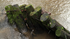 Timbers in Water Stock Footage
