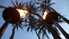 Tropical tiki torches and palm trees at dusk Stock Footage