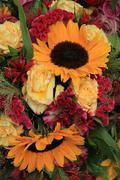 yellow and red flower arrangement - stock photo