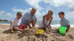 Grandparents play with grandchildren at beach - stock footage
