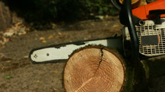 Chainsaw cutting log, slow motion Stock Footage