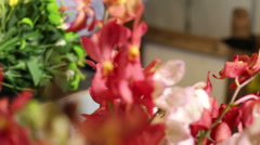 Florists small business retail shop.  Customer browsing a selection of flowers. - stock footage