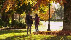 College students in the Fall Stock Footage