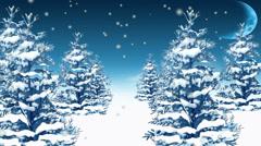winter landscape loop - stock footage
