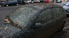 VW car covered in bird pooh 6 (pan) Stock Footage