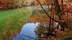 Golden autumn season and reflection Stock Footage