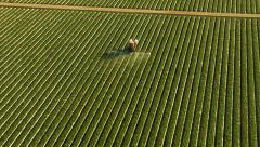 Aerial shot of tractor spraying field - stock footage