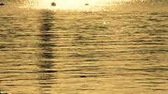Sun reflection on the water Stock Footage