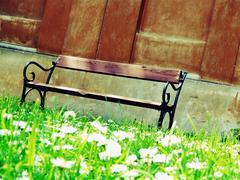 Shady bench Stock Photos