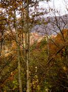 asheville in the fall - stock photo