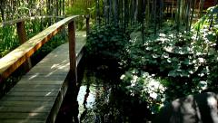 Bamboo forest with bridge and fish pond cutaway transition nature beauty Stock Footage