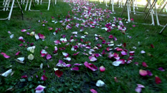 Motivation rose petals laid down the aisle on Wedding day celebration outdoors   Stock Footage