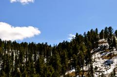 black hills south dakota-1-36 - stock photo
