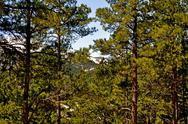 Stock Photo of black hills south dakota-1-27