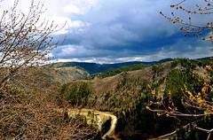 black hills south dakota - stock photo