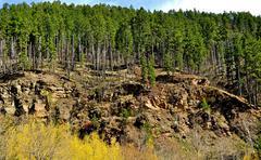 black hills south dakota-1-19 - stock photo