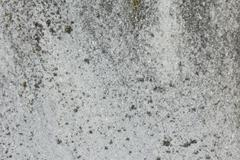 Limestone texture horizontal Stock Photos