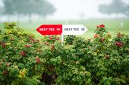 Stock Photo of Next tee sign