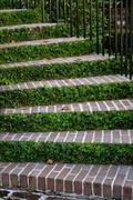 charleston steps - stock photo