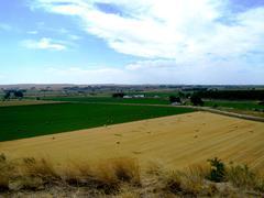 farming landscape - stock photo