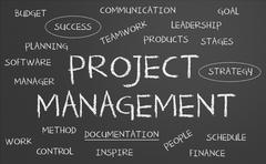 Project management word cloud Stock Illustration