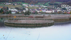 Aare River Field Stock Footage