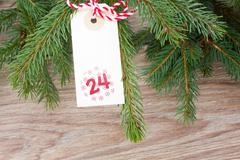 Evergreen tree and christmas tag Stock Photos