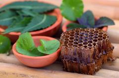 medicinal herbs with honey comb - stock photo