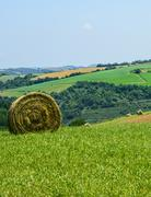 Country landscape in tarn (france) Stock Photos