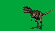 Stock Video Footage of Abelisaurus Walking Forward FS