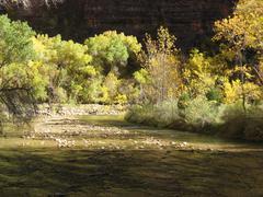 Zion Canyon UT - mountain river creek Stock Photos