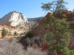 Zion Canyon UT - Scenic view rock formations Stock Photos