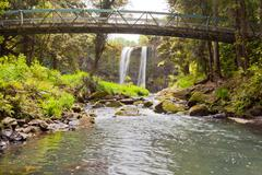 whangarei falls, northland on north island of nz - stock photo