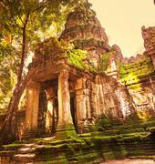 angkor - stock photo