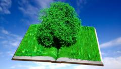 Plant grows between the pages Stock Footage