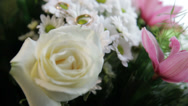 Stock Video Footage of a wedding rings on the flowers